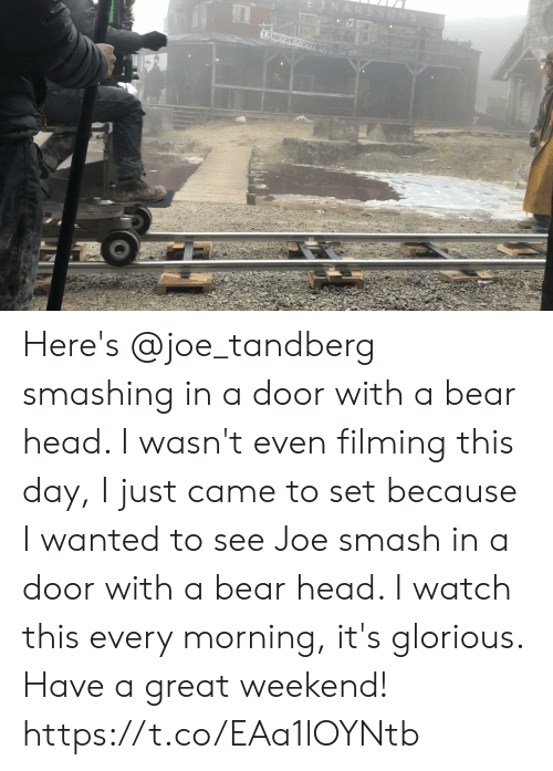 Smashing: ARSSONS Here's @joe_tandberg smashing in a door with a bear head. I wasn't even filming this day, I just came to set because I wanted to see Joe smash in a door with a bear head. I watch this every morning, it's glorious. Have a great weekend! https://t.co/EAa1lOYNtb
