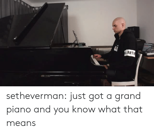 Target, Tumblr, and Blog: (ART setheverman:  just got a grand piano and you know what that means