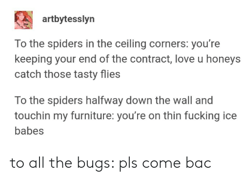 Fucking, Love, and Babes: artbytesslyn  To the spiders in the ceiling corners: you're  keeping your end of the contract, love u honeys  catch those tasty flies  To the spiders halfway down the wall and  touchin my furniture: you're on thin fucking ice  babes to all the bugs: pls come bac