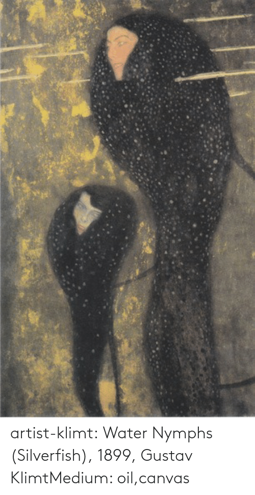 Artist: artist-klimt:  Water Nymphs (Silverfish), 1899, Gustav KlimtMedium: oil,canvas