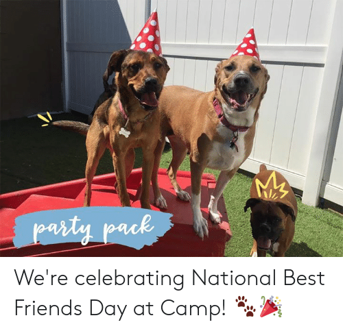 best friends day: arty pack We're celebrating National Best Friends Day at Camp! 🐾🎉