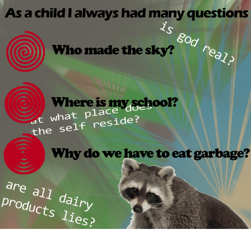 reside: As a child I always had many questions  is god real?  Who made the sky?  at what place doeloo  the self reside?  Where is  myschool?  Why do we have to eat garbage?  are all dairy  products lies?