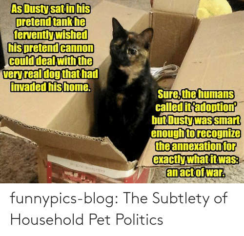 fervently: As Dusty sat in his  pretend tank he  fervently wished  his pretend cannon  Could deal with the  veryreal dog that had  invaded his home.  Sure, the humans  called it'adoption  but Dusty was smart  enough to recognize  the annexation for  exactly what it was:  an act of war. funnypics-blog:  The Subtlety of Household Pet Politics