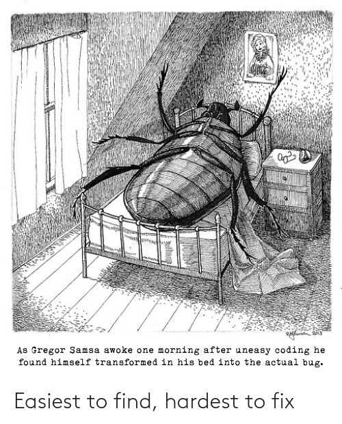 To Find: As Gregor Samsa awoke one morning after uneasy coding he  found himself transformed in his bed into the actual bug. Easiest to find, hardest to fix
