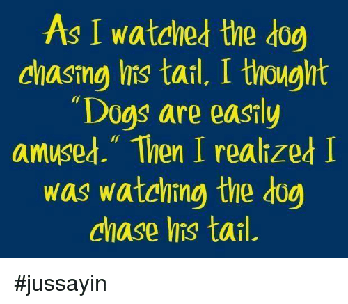 """Easily Amused: As I watched the dog  chasing his tail, I thought  Dogs are easily  amused."""" Then I realized I  was watching the dog  chase his tail. #jussayin"""