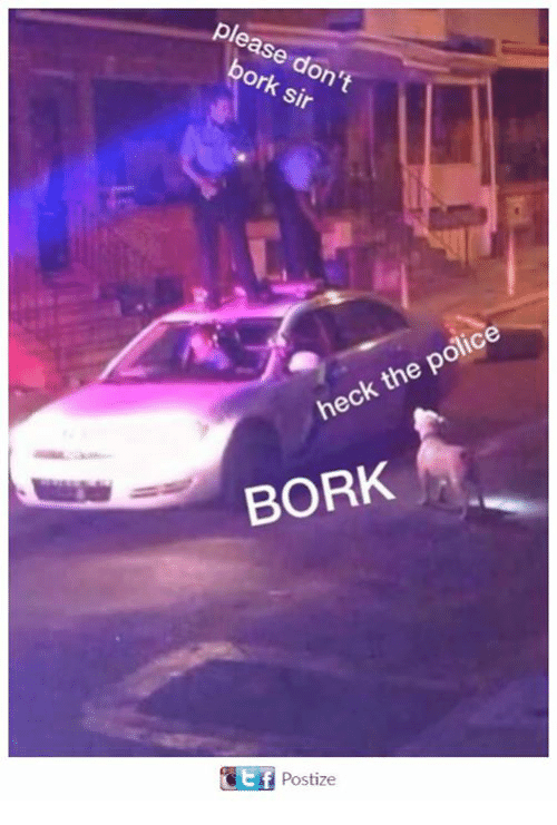 Borking: ase  ork.  Sir  police  the heck BORK  Postize