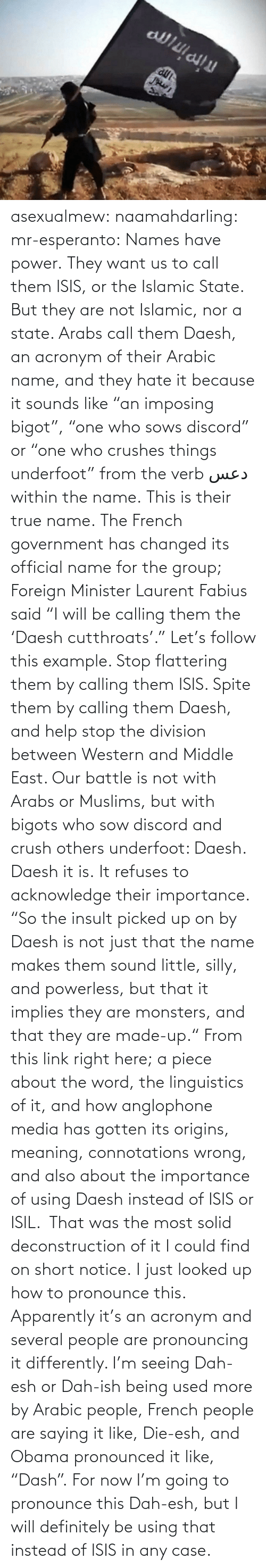 """Imposing: asexualmew:  naamahdarling:  mr-esperanto:  Names have power.  They want us to call them ISIS, or the Islamic State.  But they are not Islamic, nor a state. Arabs call them Daesh, an acronym of their Arabic name, and they hate it because it sounds like """"an imposing bigot"""", """"one who sows discord"""" or """"one who crushes things underfoot"""" from the verb دعس within the name.  This is their true name.  The French government has changed its official name for the group; Foreign Minister Laurent Fabius said """"I will be calling them the 'Daesh cutthroats'.""""  Let's follow this example. Stop flattering them by calling them ISIS.  Spite them by calling them Daesh, and help stop the division between Western and Middle East.  Our battle is not with Arabs or Muslims, but with bigots who sow discord and crush others underfoot: Daesh.  Daesh it is. It refuses to acknowledge their importance. """"So the insult picked up on by Daesh is not just that the name makes them sound little, silly, and powerless, but that it implies they are monsters, and that they are made-up."""" From this link right here;a piece about the word, the linguistics of it, and how anglophone media has gotten its origins, meaning, connotations wrong, and also about the importance of using Daesh instead of ISIS or ISIL. That was the most solid deconstruction of it I could find on short notice.  I just looked up how to pronounce this. Apparently it's an acronym and several people are pronouncing it differently.  I'm seeing Dah-esh or Dah-ish being used more by Arabic people, French people are saying it like, Die-esh, and Obama pronounced it like, """"Dash"""". For now I'm going to pronounce this Dah-esh, but I will definitely be using that instead of ISIS in any case."""