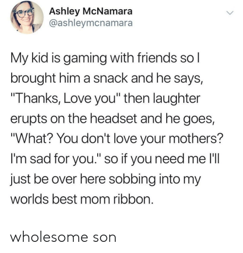 """Friends, Love, and Best: Ashley McNamara  @ashleymcnamara  My kid is gaming with friends sol  brought him a snack and he says,  Thanks, Love you"""" then laughter  erupts on the headset and he goes,  """"What? You don't love your mothers?  I'm sad for you."""" so if you need me l'll  just be over here sobbing into my  worlds best mom ribbon wholesome son"""