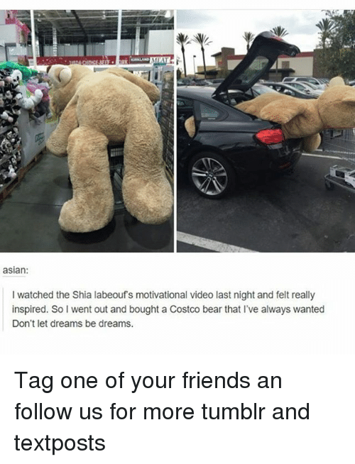 Sois: asian  I watched the Shia labeoufs motivational video last night and felt really  inspired. SoI went out and bought a Costco bear that I've aways wanted  Don't let dreams be dreams Tag one of your friends an follow us for more tumblr and textposts