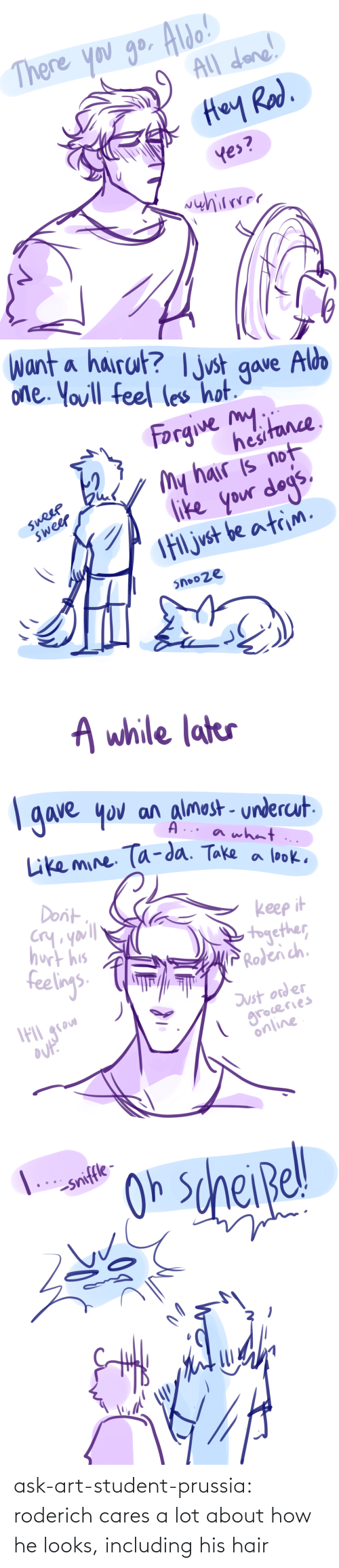 art: ask-art-student-prussia:  roderich cares a lot about how he looks, including his hair