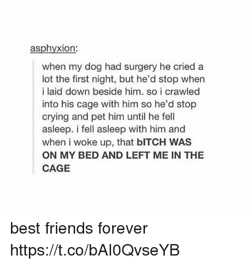 caging: asphyxion:  when my dog had surgery he cried a  lot the first night, but he'd stop when  i laid down beside him, so i crawled  into his cage with him so he'd stop  crying and pet him until he fell  asleep. i fell asleep with him and  when i woke up, that bITCH WAS  ON MY BED AND LEFT ME IN THE  CAGE best friends forever https://t.co/bAI0QvseYB