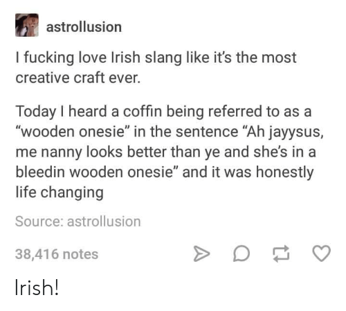 """Fucking, Irish, and Life: astrollusion  I fucking love Irish slang like it's the most  creative craft ever.  Today I heard a coffin being referred to as a  """"wooden onesie"""" in the sentence """"Ah jayysus,  me nanny looks better than ye and she's in a  bleedin wooden onesie"""" and it was honestly  life changing  Source: astrollusion  38,416 notes Irish!"""