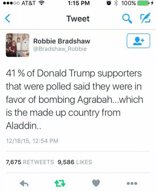 Donald Trump Supporters: AT&T  1:15 PM  。 : 100%) 0.4  Iweet  Robbie Bradshaw  @Bradshaw_Robbie  41 % of Donald Trump supporters  that were polled said they were in  favor of bombing Agrabah...which  is the made up country from  Aladdin  12/18/15, 12:54 PM  7,675 RETWEETS 9,586 LIKES