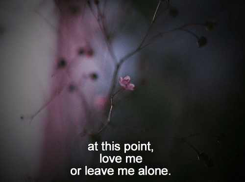 Being Alone, Love, and This: at this point,  love me  or leave me alone