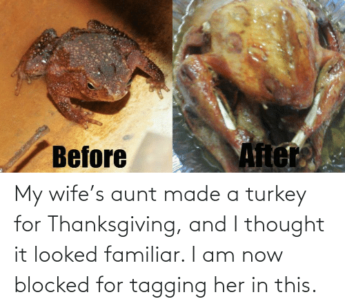 Looked: Ater  Before My wife's aunt made a turkey for Thanksgiving, and I thought it looked familiar. I am now blocked for tagging her in this.