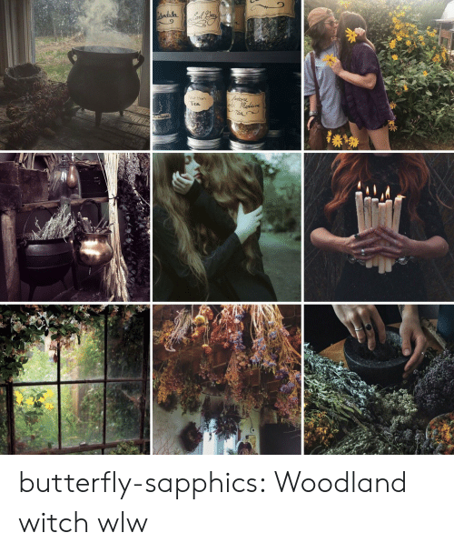 Butterfly: Atondula  Yedoore  Neo Meon  Tea  Tea butterfly-sapphics:  Woodland witch wlw