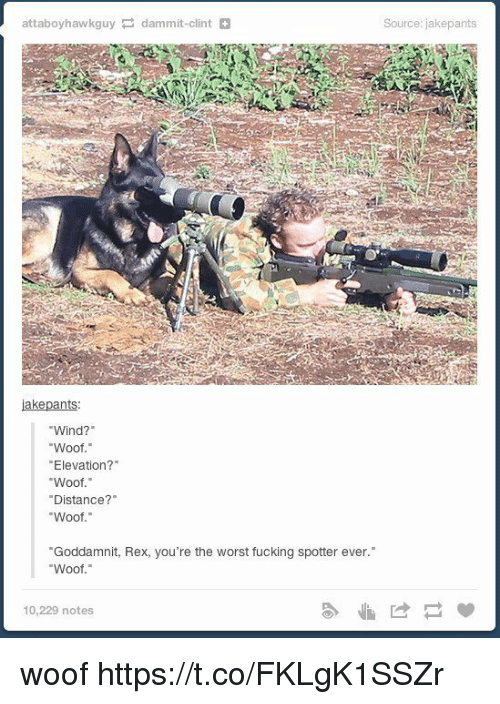 """Woofe: attaboyhawkguy dammit-clint  iakepants  Wind?""""  Woof.""""  """"Elevation?""""  Woof.""""  Distance?  Woof  """"Goddamnit, Rex, you're the worst fucking spotter ever.  Woof.""""  10,229 notes  Source: jakepants woof https://t.co/FKLgK1SSZr"""