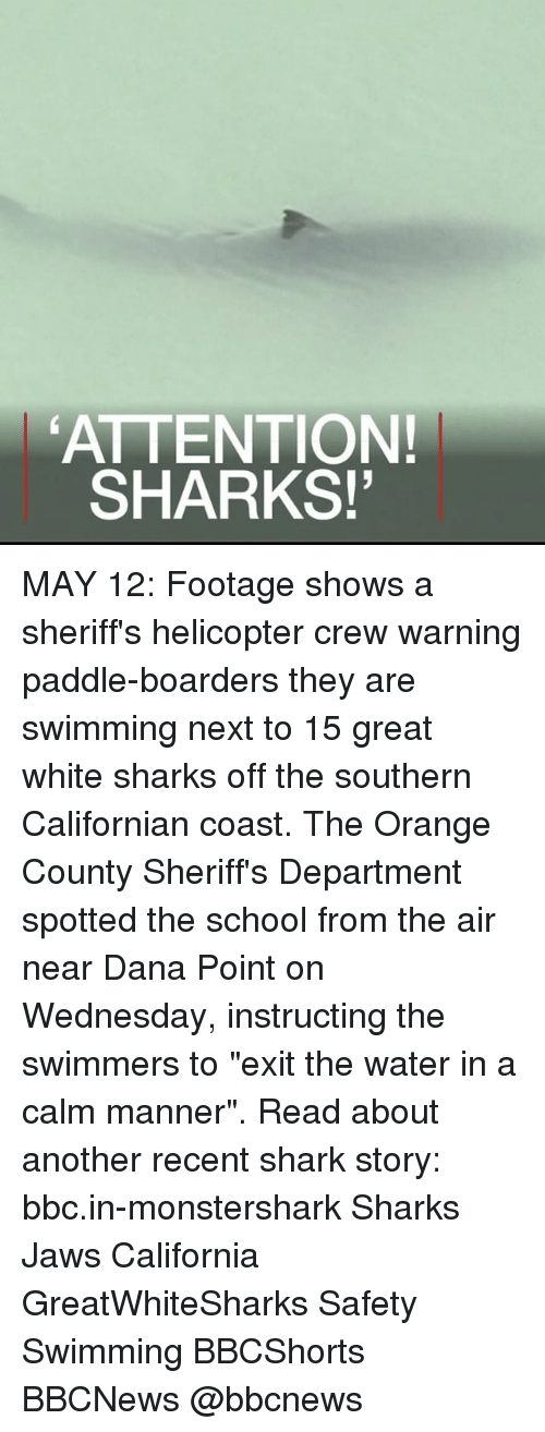 "boarders: ATTENTION!  SHARKS! MAY 12: Footage shows a sheriff's helicopter crew warning paddle-boarders they are swimming next to 15 great white sharks off the southern Californian coast. The Orange County Sheriff's Department spotted the school from the air near Dana Point on Wednesday, instructing the swimmers to ""exit the water in a calm manner"". Read about another recent shark story: bbc.in-monstershark Sharks Jaws California GreatWhiteSharks Safety Swimming BBCShorts BBCNews @bbcnews"