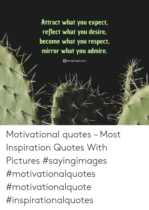 motivational quotes: Attract what you expect,  reflect what you desire,  become what you respect,  mirror what you admire.  sayinglmages.com Motivational quotes – Most Inspiration Quotes With Pictures #sayingimages #motivationalquotes #motivationalquote #inspirationalquotes