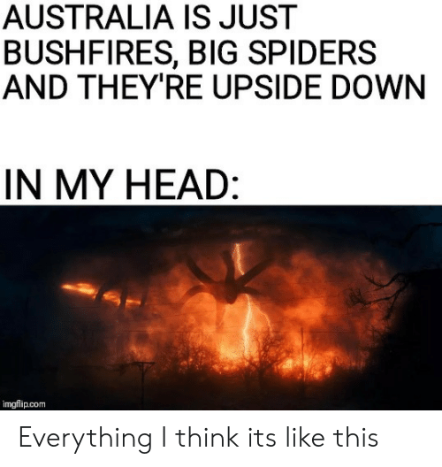 Head, Australia, and Spiders: AUSTRALIA IS JUST  BUSHFIRES, BIG SPIDERS  AND THEY'RE UPSIDE DOWN  IN MY HEAD:  imgflip.com Everything I think its like this