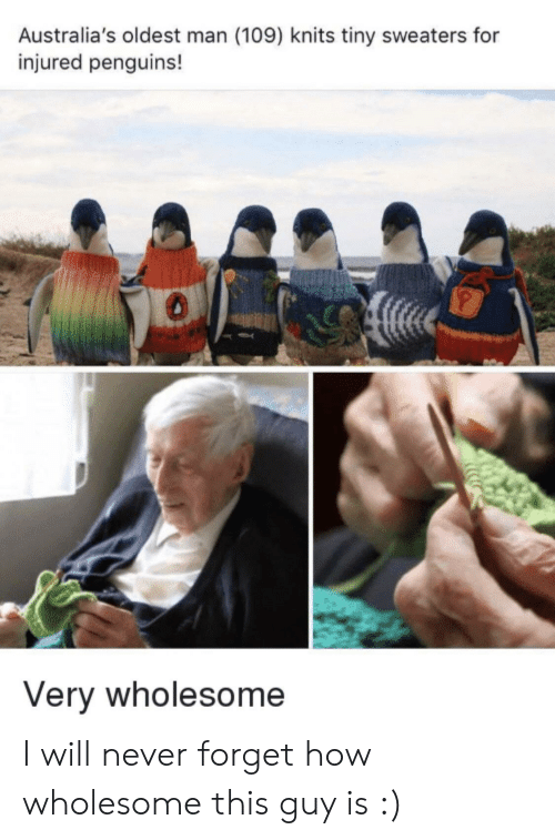 Penguins: Australia's oldest man (109) knits tiny sweaters for  injured penguins!  Very wholesome I will never forget how wholesome this guy is :)