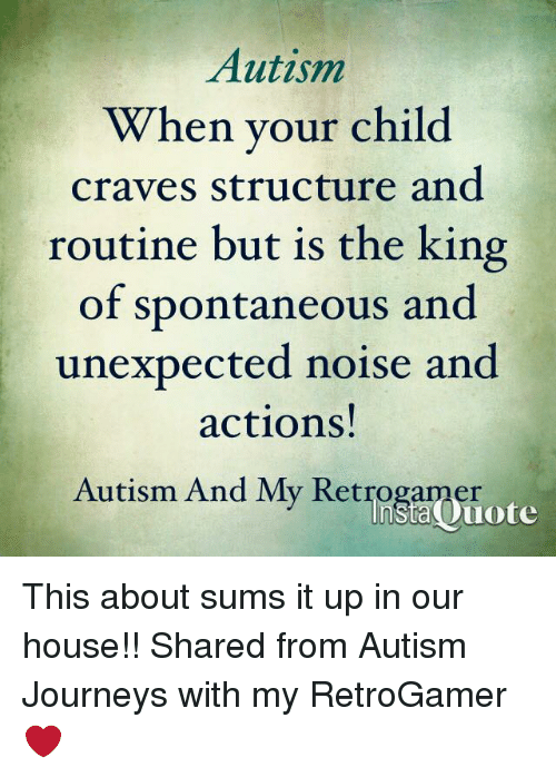Unexpectancy: Autism  When your child  craves structure and  routine but is the king  of spontaneous and  unexpected noise and  actions!  Autism And My Retrogamer  insta uote This about sums it up in our house!!   Shared from Autism Journeys with my RetroGamer ❤