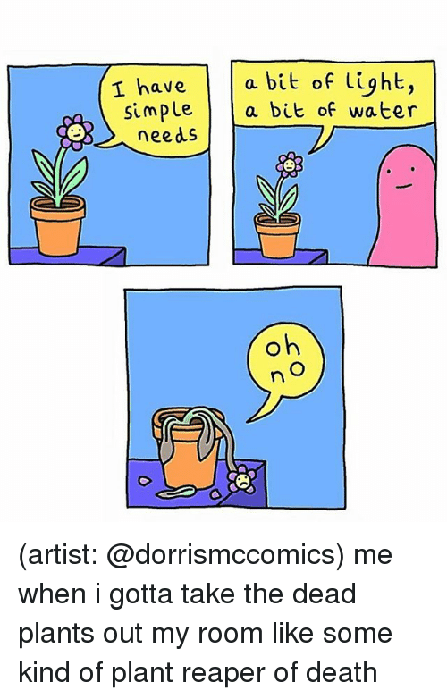 Memes, Death, and Water: ave  a bu  simple a bit of water  eeds (artist: @dorrismccomics) me when i gotta take the dead plants out my room like some kind of plant reaper of death