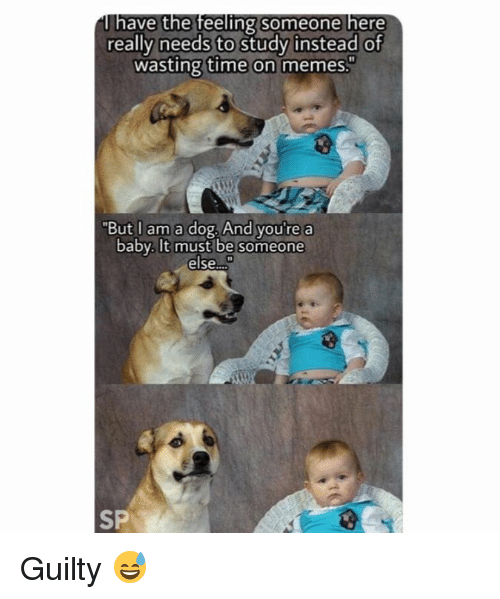 """Memes, Time, and Baby: ave the feeling someone here  really needs to study instead of  wasting time on memes.  """"But I am a dog. And you'  e a  baby. It must be someone  else.  SP Guilty 😅"""