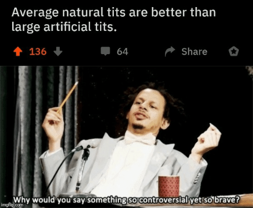 Brave: Average natural tits are better than  large artificial tits.  會 136  Share  64  Why would you say something so controversial yet so brave?  imgflip.com
