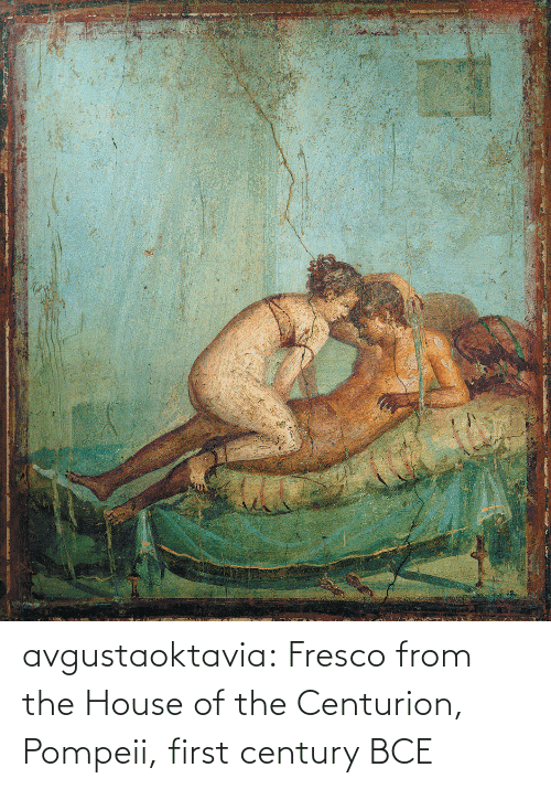 pompeii: avgustaoktavia:   Fresco from the House of the Centurion, Pompeii, first century BCE