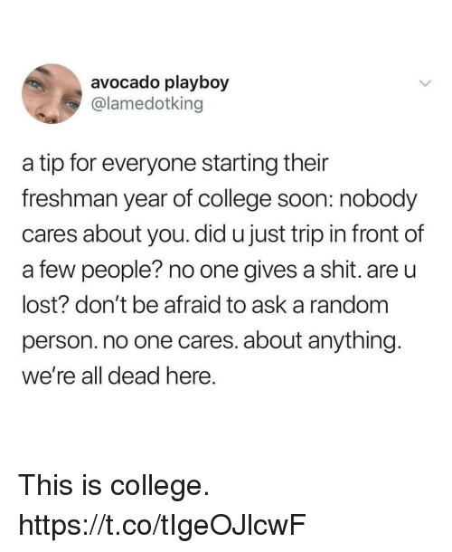 Gives A Shit: avocado playboy  @lamedotking  a tip for everyone starting their  freshman year of college soon: nobody  cares about you. did u just trip in front of  a few people? no one gives a shit. are u  lost? don't be afraid to ask a random  person. no one cares. about anything  we're all dead here This is college. https://t.co/tIgeOJlcwF