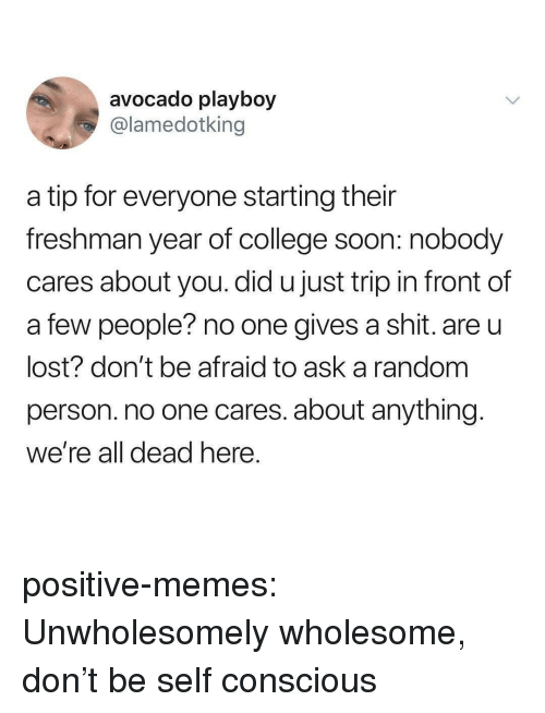 Gives A Shit: avocado playboy  @lamedotking  a tip for everyone starting their  freshman year of college soon: nobody  cares about you. did u just trip in front of  a few people? no one gives a shit. are u  lost? don't be afraid to ask a random  person. no one cares. about anything  We're all dead nere positive-memes:  Unwholesomely wholesome, don't be self conscious
