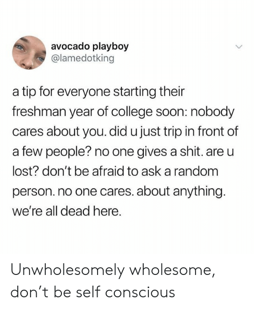 College, Shit, and Soon...: avocado playboy  @lamedotking  a tip for everyone starting their  freshman year of college soon: nobody  cares about you. did u just trip in front of  a few people? no one gives a shit. are u  lost? don't be afraid to ask a random  person. no one cares. about anything.  we're all dead here. Unwholesomely wholesome, don't be self conscious