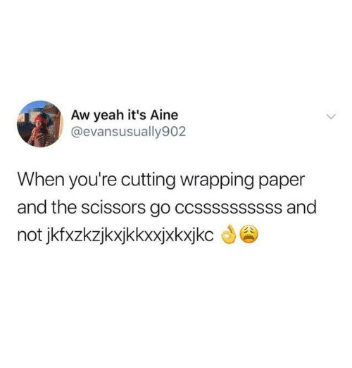 Dank, Yeah, and Aw Yeah: Aw yeah it's Aine  @evansusually902  When you're cutting wrapping paper  and the scissors go ccssssssssss and