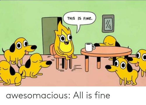 Is Fine: awesomacious:  All is fine