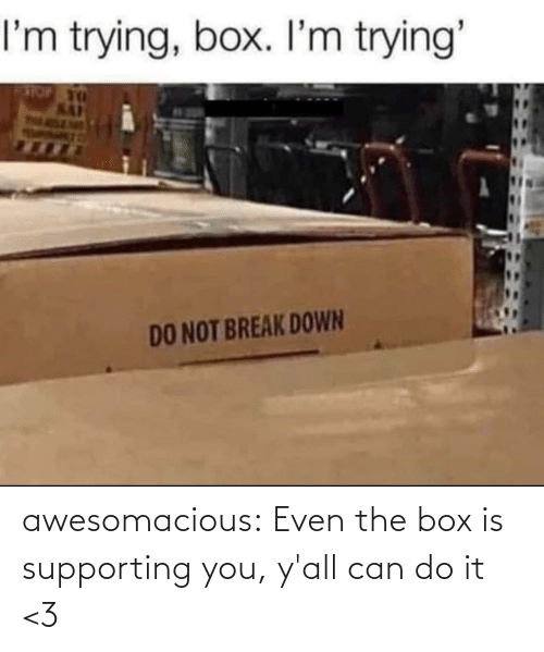 Supporting: awesomacious:  Even the box is supporting you, y'all can do it <3