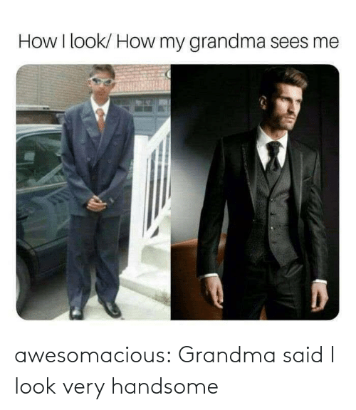 handsome: awesomacious:  Grandma said I look very handsome