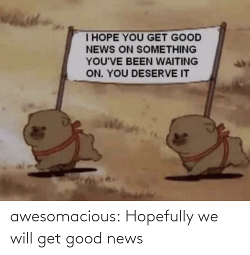 hopefully: awesomacious:  Hopefully we will get good news