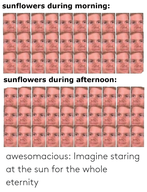 At: awesomacious:  Imagine staring at the sun for the whole eternity