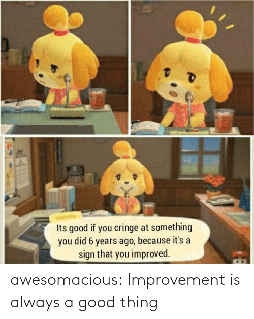 Improvement: awesomacious:  Improvement is always a good thing