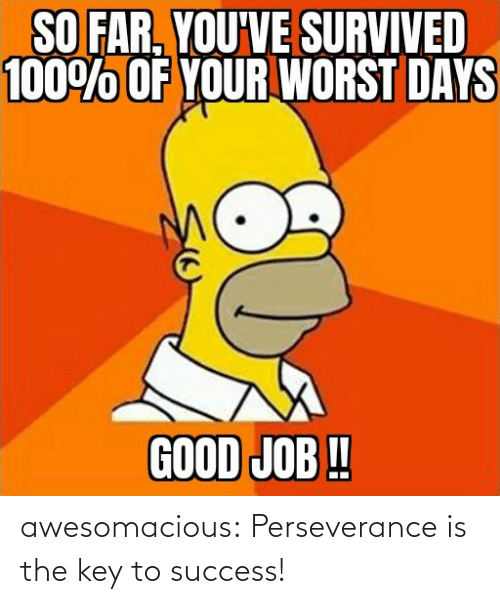 Success: awesomacious:  Perseverance is the key to success!