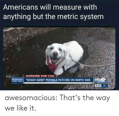 Thats: awesomacious:  That's the way we like it.