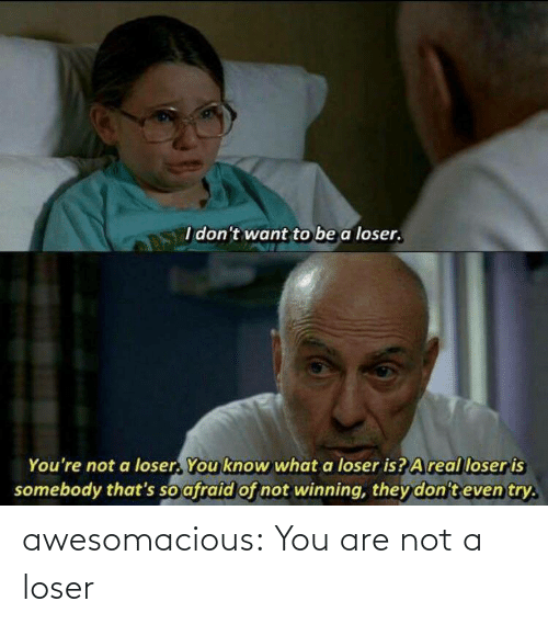 Are Not: awesomacious:  You are not a loser
