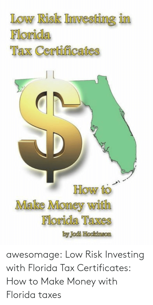 risk: awesomage:  Low Risk Investing with Florida Tax Certificates: How to Make Money with Florida taxes