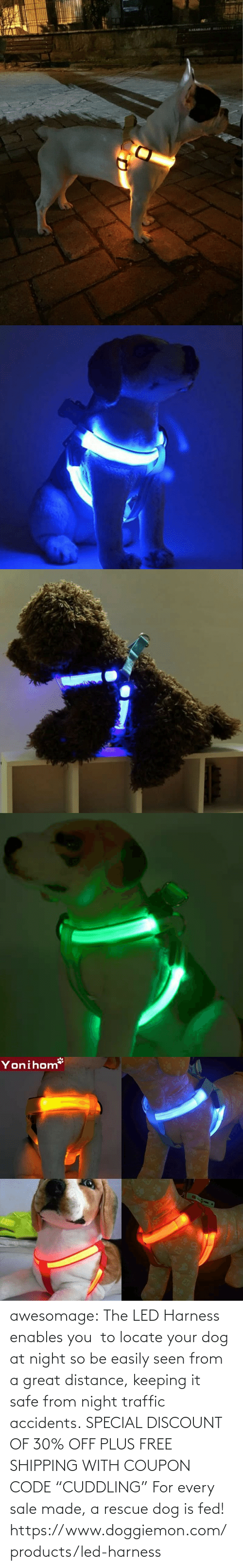 "great: awesomage:   The LED Harness enables you  to locate your dog at night so be easily seen from a great distance, keeping it safe from night traffic accidents. SPECIAL DISCOUNT OF 30% OFF PLUS FREE SHIPPING WITH COUPON CODE ""CUDDLING"" For every sale made, a rescue dog is fed!   https://www.doggiemon.com/products/led-harness"