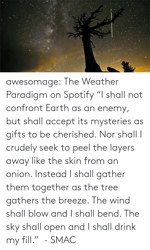 "Nor: awesomage:   The Weather Paradigm on Spotify   ""I shall not confront Earth as an enemy, but shall accept its mysteries as gifts to be cherished. Nor shall I crudely seek to peel the layers away like the skin from an onion. Instead I shall gather them together as the tree gathers the breeze. The wind shall blow and I shall bend. The sky shall open and I shall drink my fill.""  - SMAC"