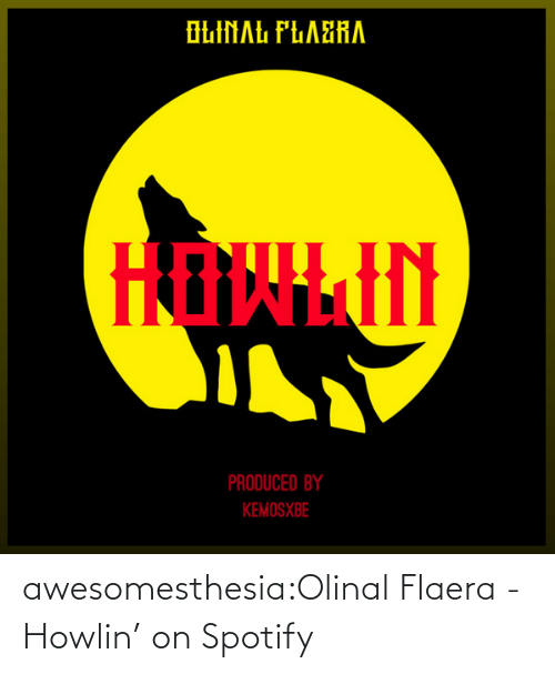 redirect: awesomesthesia:Olinal Flaera - Howlin' on Spotify