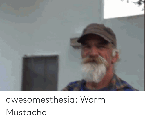 worm: awesomesthesia:  Worm Mustache