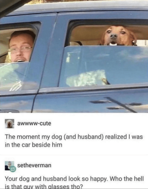 Awwww: awwww.cute  The moment my dog (and husband) realized I was  in the car beside him  setheverman  Your dog and husband look so happy. Who the hell  is that auy with alasses tho?