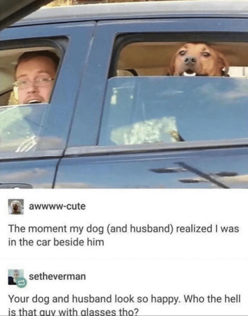 Awwww: awwww-cute  The moment my dog (and husband) realized I was  in the car beside him  setheverman  Your dog and husband look so happy. Who the hell  is that auy with glasses tho?